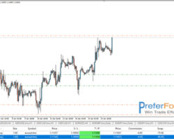 highly success profit forex signals