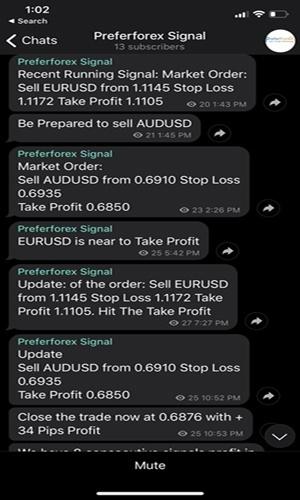 forex signals in telegram